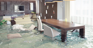 4 Things Los Angeles Women need to do When Their Basement Gets Flooded
